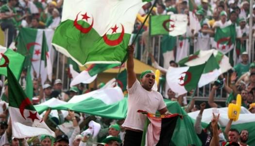 Coupe d'Algérie :  USM Alger-El Harrach, la belle affiche !
