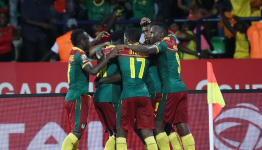 Cameroun: Surpris, Broos assume l'échec