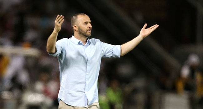 Djamel Belmadi (photo afc.com )