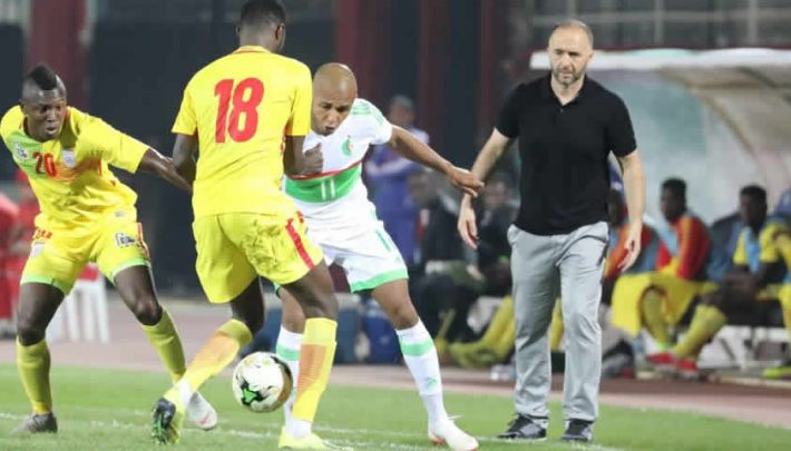 Djamel Belmadi lors de Bénin - Algérie (1-0),