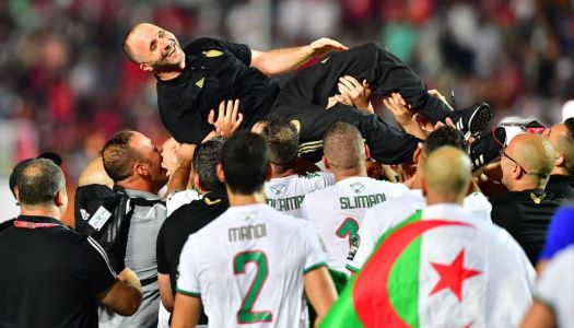 The Best FIFA : Salah et Belmadi nommés